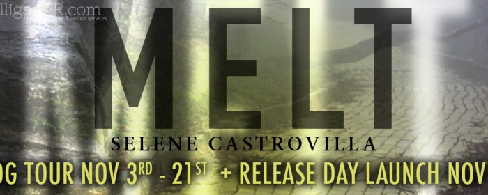 Sign Up | MELT Release Launch and Blog Tour